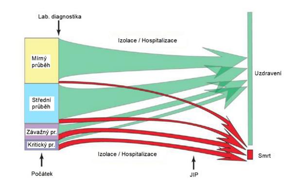 Případy nakažených ve Wu-Hanu. Velikosti bloků odpovídají procentuálnímu zastoupení závažnosti potvrzených případů a vývoji jejich nemoci.